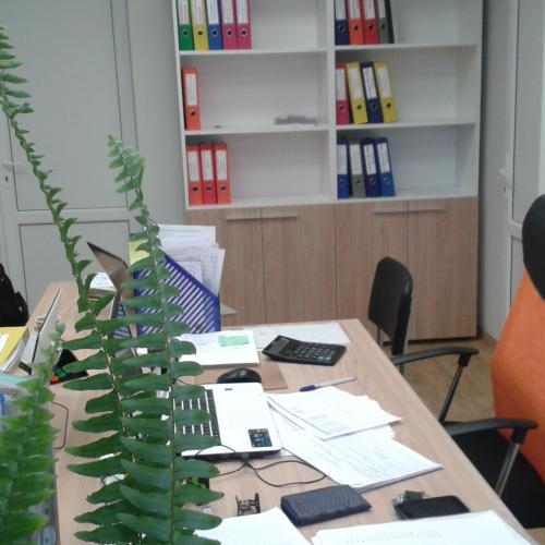 Офис для компании